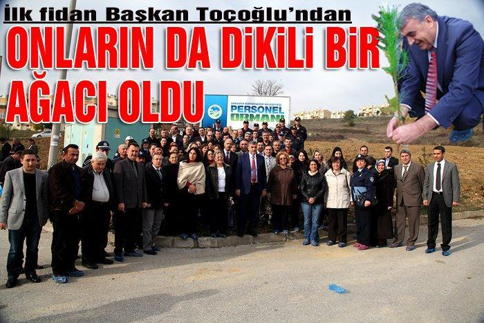 Büyükşehir Belediyesi personeli fidan dikti