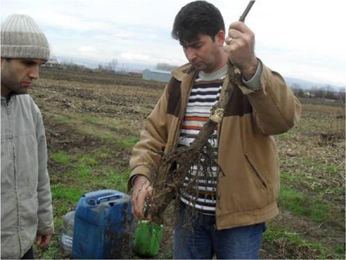 Akyazı'da HEM tarımsal kurs düzenleyecek