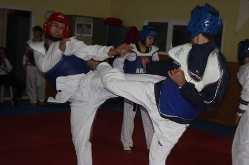 Taekwondoculardan ortak çalışma