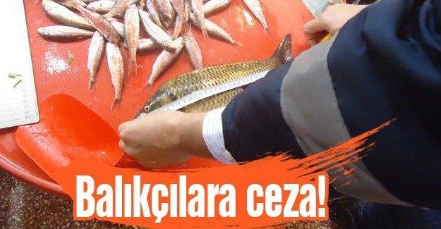 Avlanma boyunun altında balık satışı yapıyorlardı