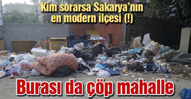 Kim sorarsa Sakarya'nın en modern ilçesi (!)