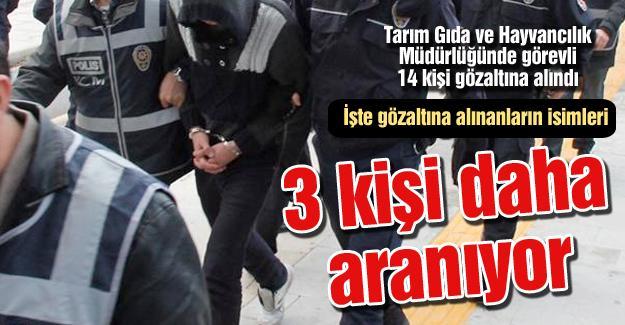 17 kişiden 14'ü gözaltına alındı