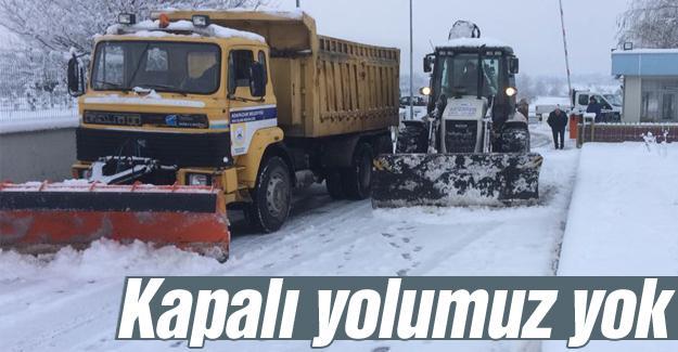Adapazarı Belediyesi'nden kar seferberliği