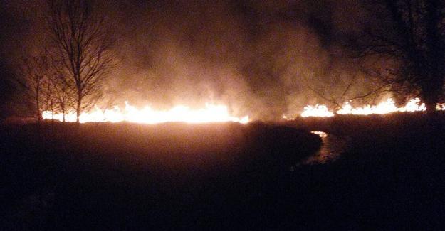 5 hektarlık sazlık alan yandı
