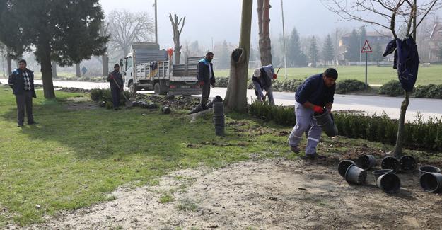 Park ve bahçeler ekipleri bahar çalışmalarına başladı