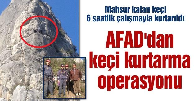 AFAD'dan keçi kurtarma operasyonu