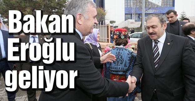 Bakan Eroğlu bir dizi programa katılacak