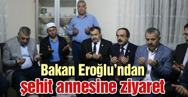 Bakan Eroğlu şehit Aydoğan Aydın'ın annesini ziyaret etti