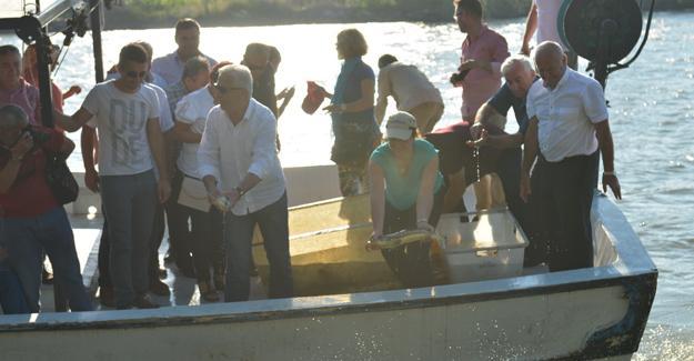Kültür Turizm Fındık ve Mersin Balığı Festivali başlıyor