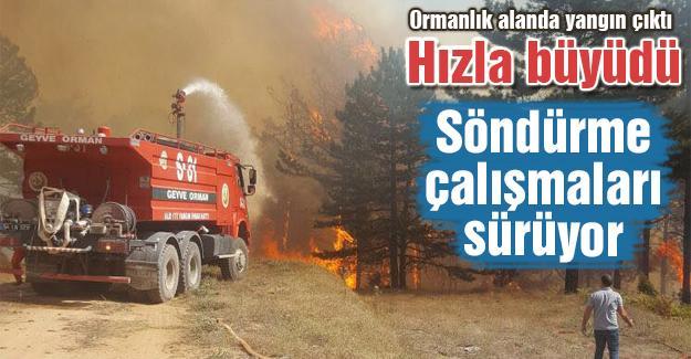 Yangını söndürme çalışmaları sürüyor