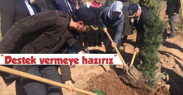 AK Parti Adapazarı'ndan fidan dikim etkinliği