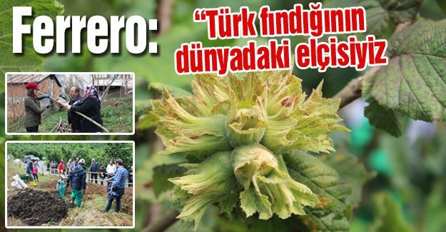 """Ferrero: """"Türk fındığının dünyadaki elçisiyiz"""""""