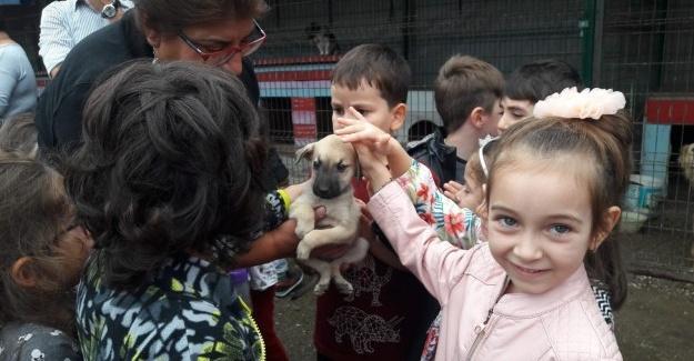 Anaokulu öğrencilerine hayvan sevgisi aşılandı