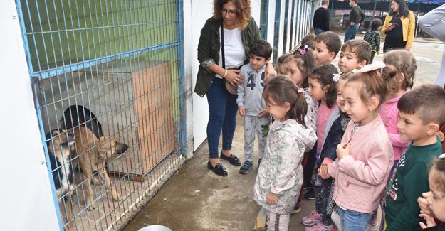 Miniklerden Karasu geçici hayvan barınağına ziyaret