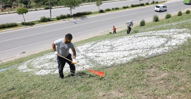 Adapazarı Belediyesi ilçede temizliği elden bırakmıyor