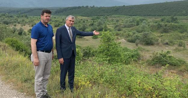 Akyazı'ya dev tarım yatırımı