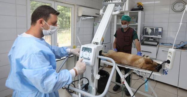 Bakımevi'ne yeni röntgen cihazı