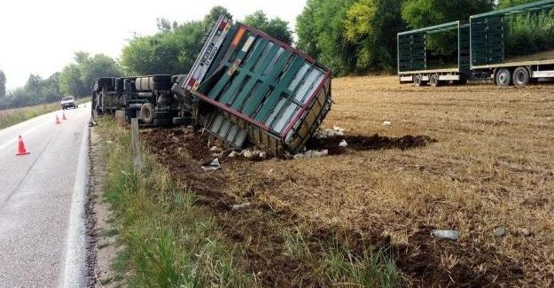 Taraklı-Geyve yolunda kaza! 1 yaralı