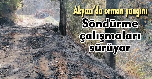 Akyazı'da orman yangını!
