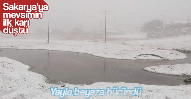 Sakarya'ya mevsimin ilk karı düştü