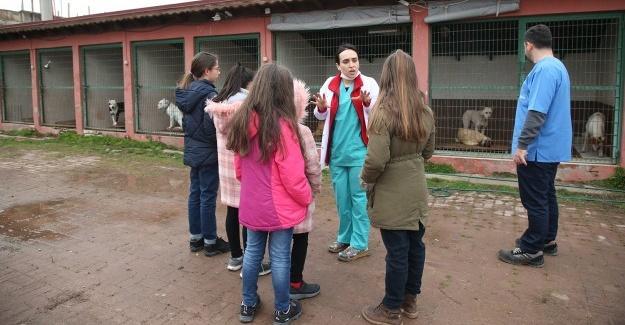 Öğrencilerden Sokak Hayvanları Bakımevine ziyaret