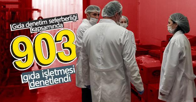 Sakarya'da 903 gıda işletmesi denetlendi