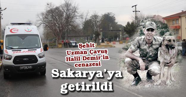 Şehit Uzman Çavuş Halil Demir'in cenazesi Sakarya'ya getirildi