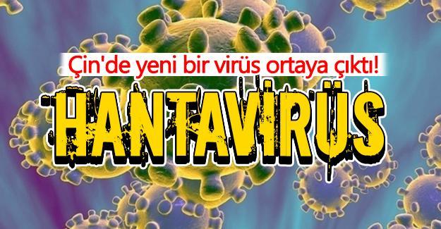 Çin'de yeni bir virüs ortaya çıktı!