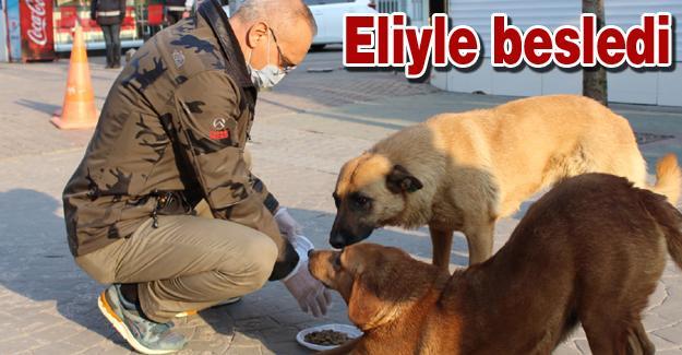 İl Emniyet Müdürü Kaya sokak hayvanlarını unutmadı