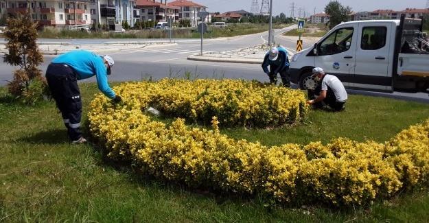 Park ve yeşil alanlarda bahar temizliği