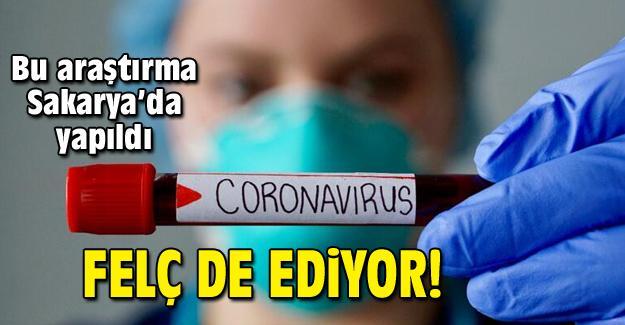 Koronavirüs ile ilgili şok araştırma
