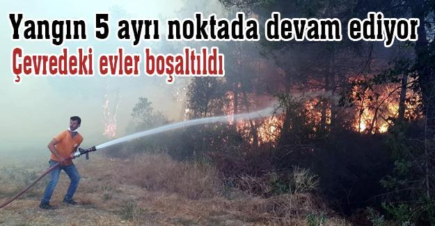 Yangın 5 ayrı noktada devam ediyor