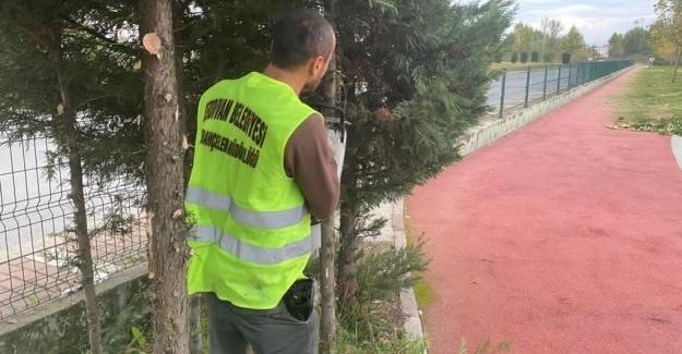 Serdivan'da sonbahar temizliği