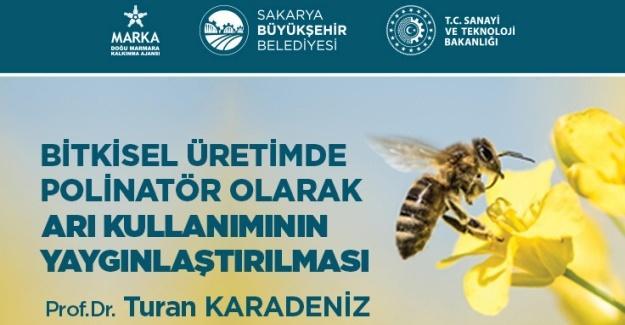 Arı kullanımının yaygınlaşması için eğitimler verilecek