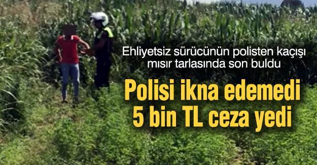 Ehliyetsiz sürücünün polisten kaçışı mısır tarlasında son buldu