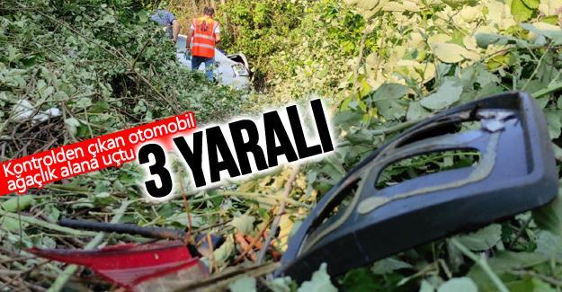 Kontrolden çıkan otomobil ağaçlık alana uçtu