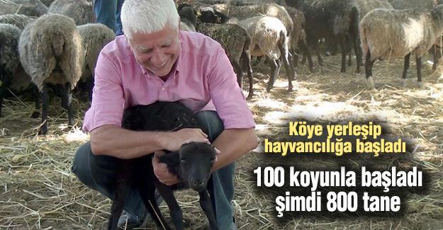 100 koyunla başladı şimdi 800 tane