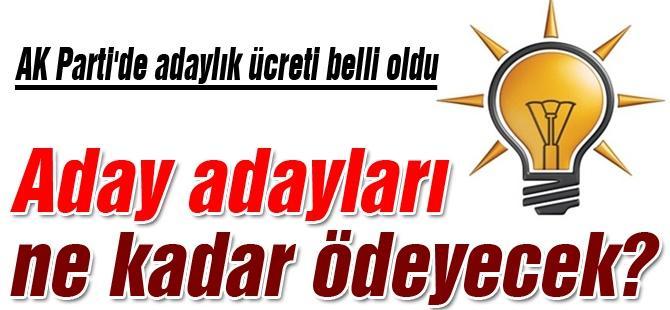 AK Parti'de adaylık ücreti belli oldu