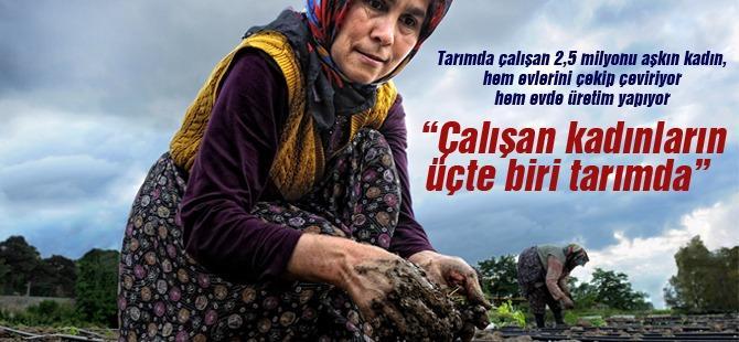 """""""Çalışan kadınların üçte biri tarımda"""""""