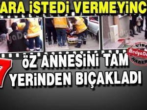 AK Parti Erenler'den Alemdar'a ziyaret