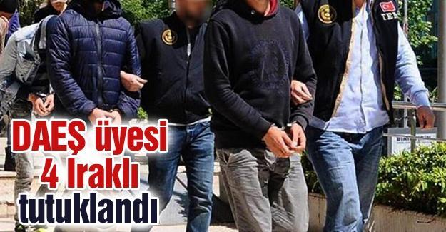 DAEŞ üyesi 4 Iraklı tutuklandı