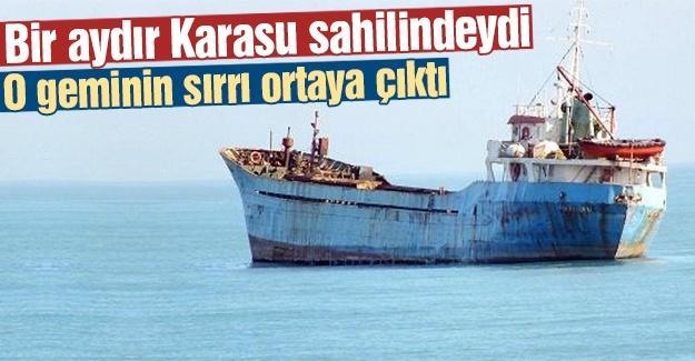 O geminin sırrı ortaya çıktı