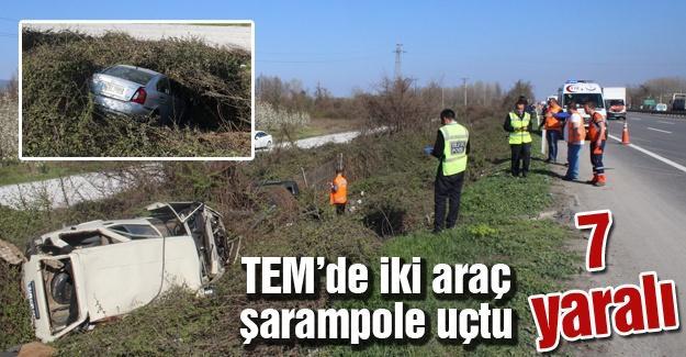TEM'de iki araç şarampole uçtu 7 yaralı