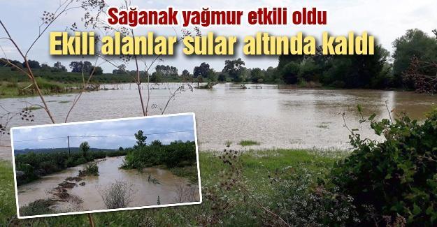 Ekili alanlar sular altında kaldı