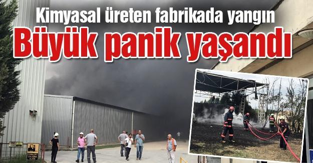Kimyasal üreten fabrikada yangın