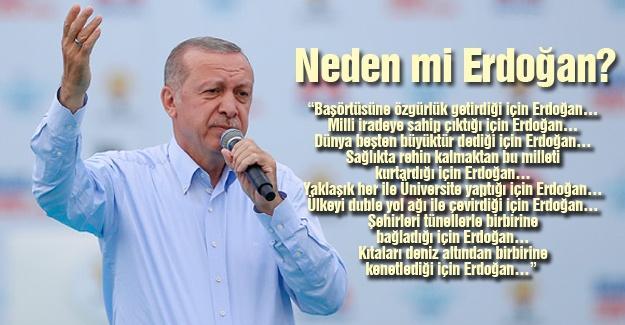 Neden mi Erdoğan?