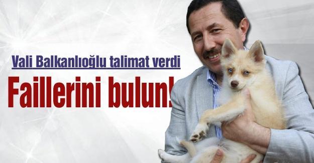 Vali İrfan Balkanlıoğlu talimat verdi