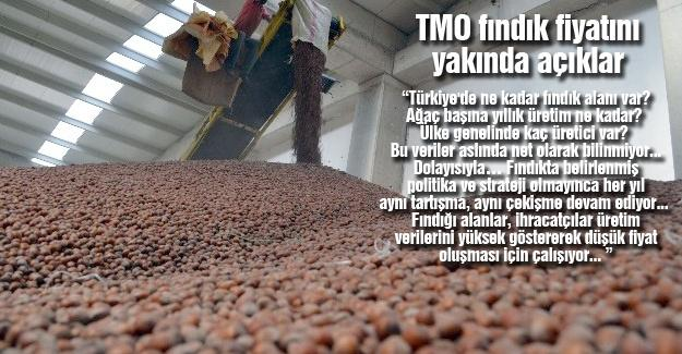 TMO fındık fiyatını yakında açıklar