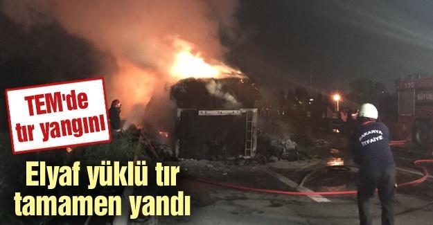 TEM'de tır yangını!