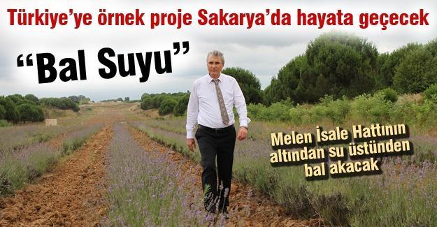 Türkiye'ye örnek proje Sakarya'da hayata geçecek